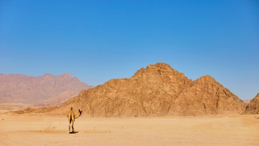 המדבר - חלק ראשון